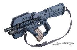 Earl's rifle ATR-19