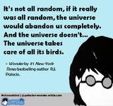 Universe-birds