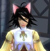 Fe cat