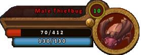 MaleThiefbugBar