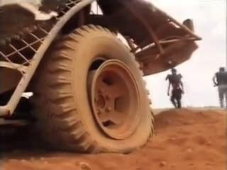 File:Cow car stunt 4.jpg