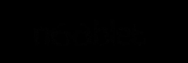File:Nooblet New Logo.png