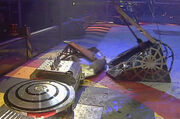 Hypno-Disc vs Bigger Brother vs Spawn Again