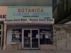 Botanica carlos 1