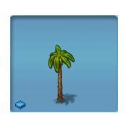 Luxury Palmtree