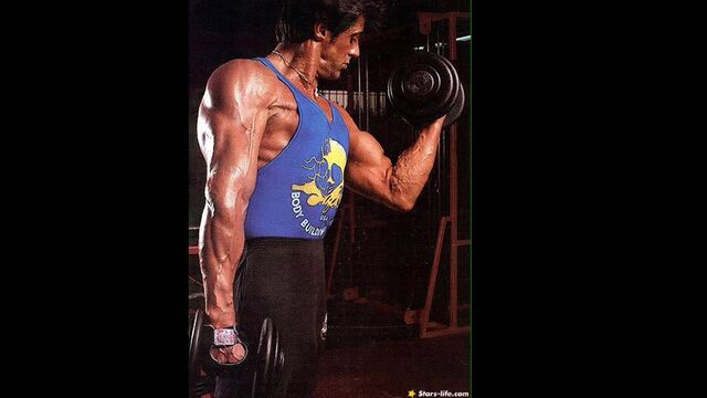 File:Sylvester stallone body muscle 8.JPG
