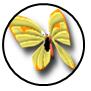Rank s 01 monarch