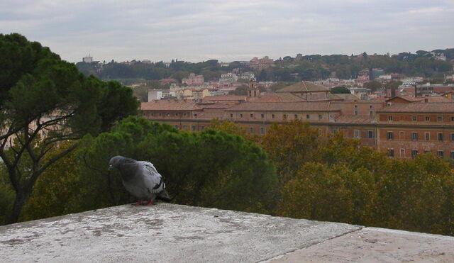 File:2011 Maria del Buon Viaggio, belfry.jpg