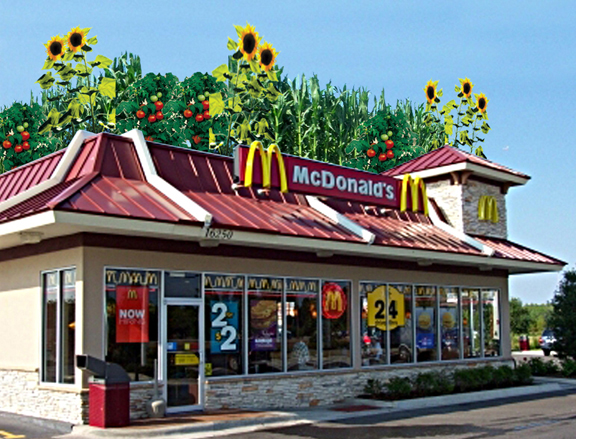 File:10-demian-mcdonalds-roof-1-85.jpg