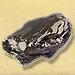 Graphite Anthracite