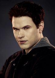 Emmett Cullen breaking dawn.