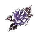 File:Roses3.jpg