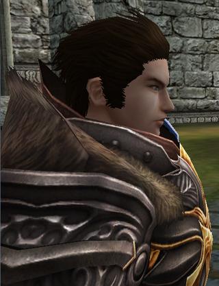 Blader in-game 2