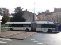Bus vitalis (5)