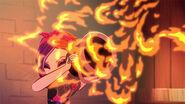 DG TMS - poppy against flames