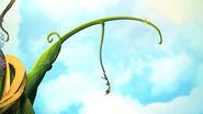 Beanstalk Bravado - humph jill on string