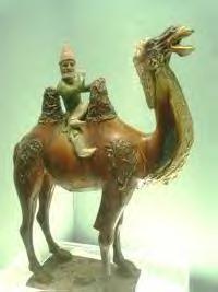 File:Westerner on a camel.jpg