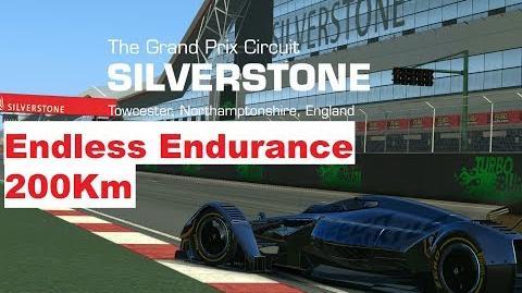 Endless Endurance MP4-X Silverstone