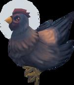 Chicken (Beneath Cursed Tides)