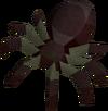 Spider (Haunted Woods)