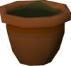 Willow seedling (w) detail