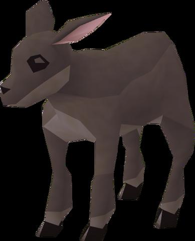 File:Black lamb.png
