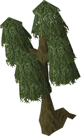 File:Willow tree old.png