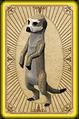 Scavenging meerkats card detail.png