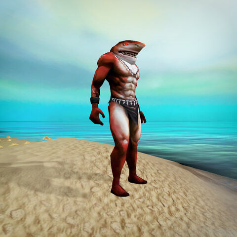 File:Shark outfit news image.jpg