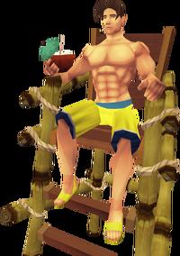 Lifeguard 1
