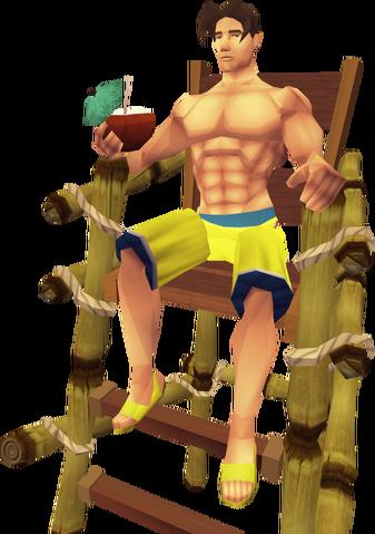 File:Lifeguard 1.png