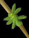 Spider on stick (raw) detail