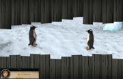 Spying penguins