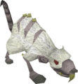 Albino rat old.png
