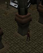 Nomad hide square