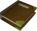 Edern's journal detail.png