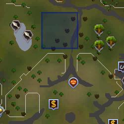 Kat location