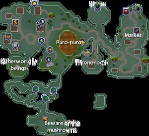Zanaris map