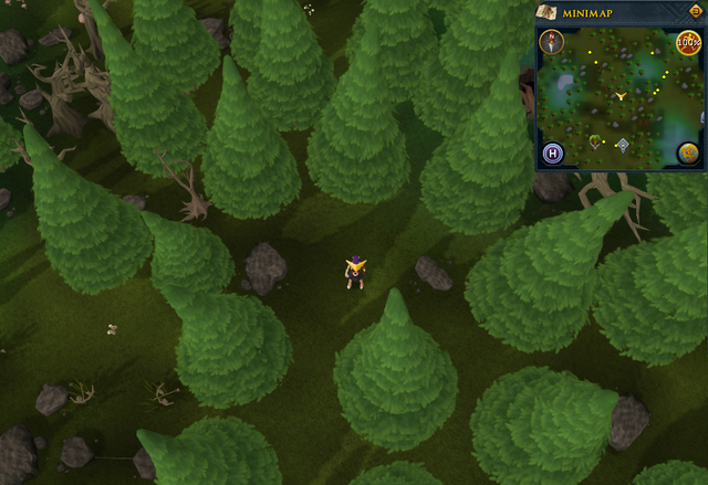 File:Scan clue Tirannwn in small clearing north of Hunter training icon east of Tyras Camp.png