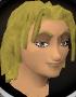 File:Freygerd chathead.png