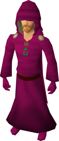 File:H.A.M. robes equipped.png