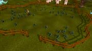 Seer's Village flax field