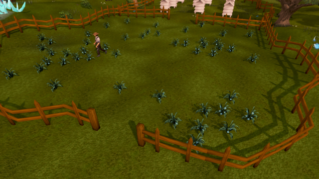 File:Seer's Village flax field.png