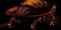 Warped Roach
