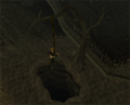 Wilderness agility course(Rope swing).png