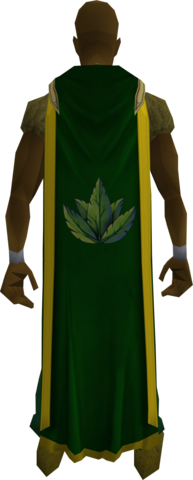 File:Herblore cape (t) equipped.png