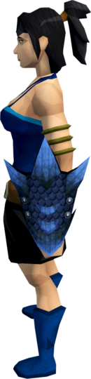 File:Blue dragonhide shield equipped.png