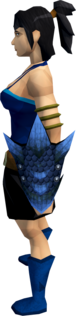Blue dragonhide shield equipped