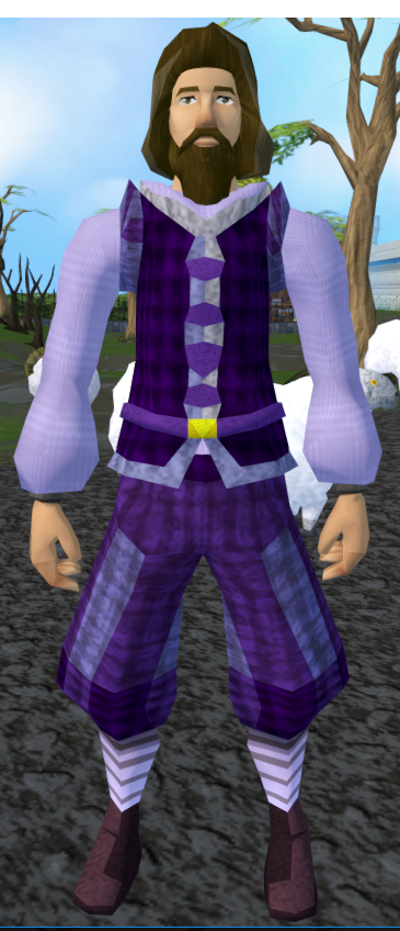 File:Purple elegant clothing equipped.png