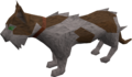 Wily cat (white and brown) pet.png